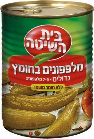 Cucumbers In Vinegar 7-9 Beit Hashita