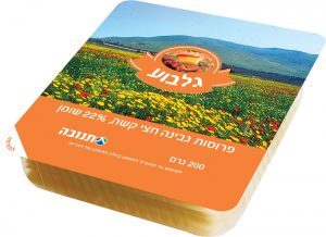 Gilboa Cheese Sliced 22% Tnuva 200G