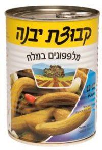 Kvutzat Yavne Cucumber In Brine 13-17 560G