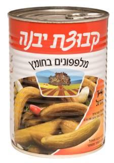 Kvutzat Yavne Cucumber In Vinegar 7-9 560G