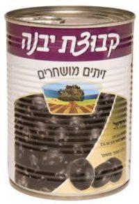 Kvutzat Yavne Large Black Olives 560G
