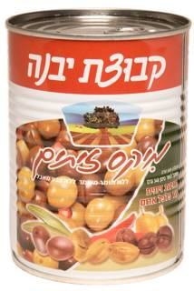 Kvutzat Yavne Mixed Olives 560G