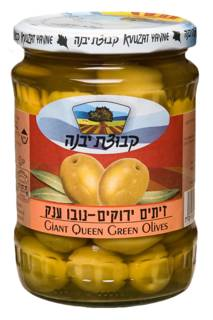 Kvutzat Yavne Queen Novo Olives Jar 580G