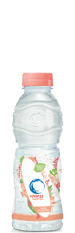 Neviot Peach Flavoured Mineral Water Small Bottle  500ml