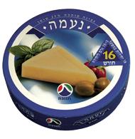 Naama Melted Cheese 25% Tnuva 240G (16PC)