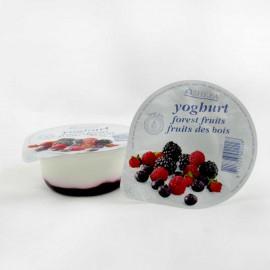 Shefa Forest Fruit Yogurt 125G