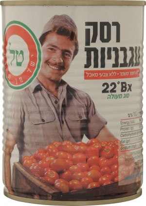Tal Tomato Paste Large Tin  570G