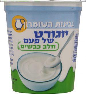 Traditional Yogurt Sheep's Milk 4% Shomron Chesse 180G
